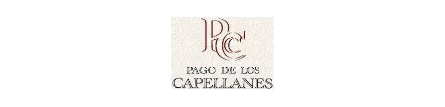 PAGO CAPELLANES