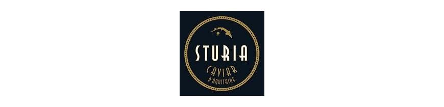 STURIA
