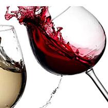 Marcas de Vinos Premium